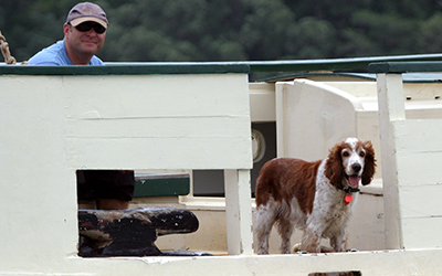 For canine crew members, regatta rules okay