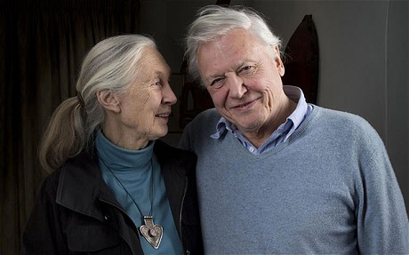 Dame Jane Goodall and Dr David Attenborough