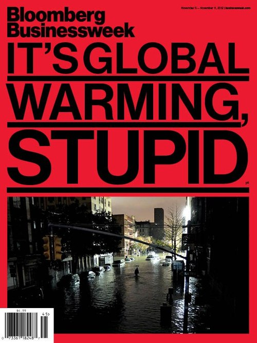 Bloomberg Businessweek cover, It's Global Warming, Stupid