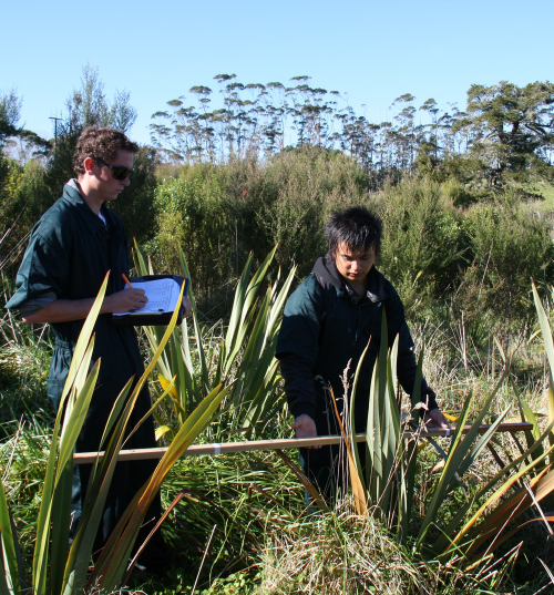 Sandspit Road remeasuring, 2012