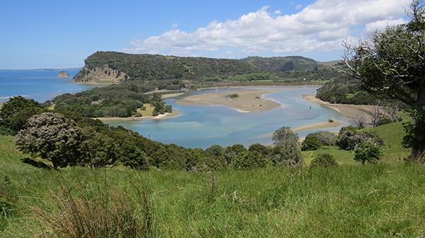 Wenderholm from Te Araroa
