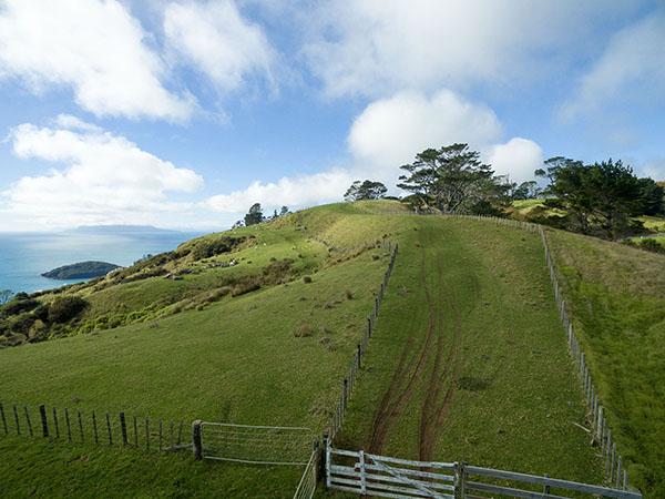 Pakiri Hill paper-Road vista