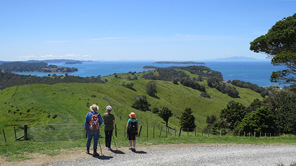 Te Muri ridge walkers admire view