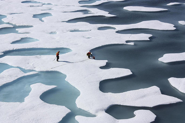 Arctic sea-ice melt pools