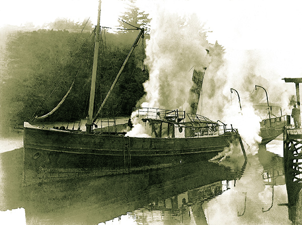 Kapanui burning