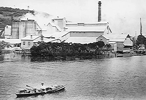 William Hamilton rowing Mahurangi punt past the Wilson Cement Works