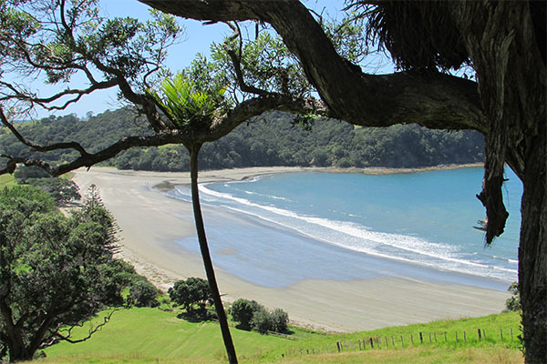 Te Muri Beach, Chris Eady