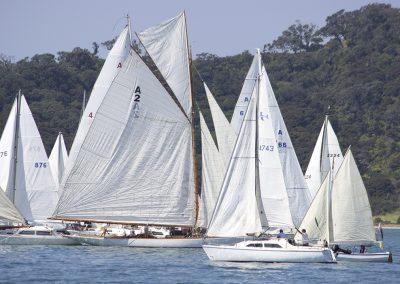 Rawhiti swan of the fleet