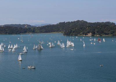 Fleet from Tungutu