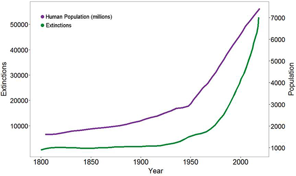 Species extinction rate compared with human population