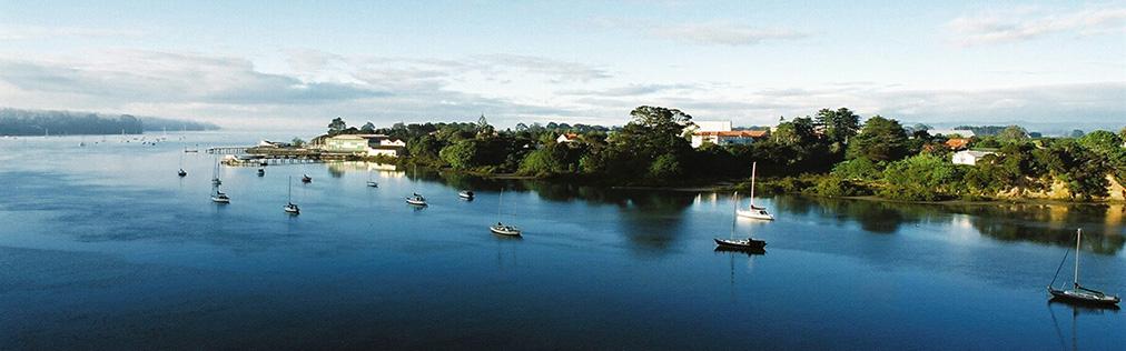 Hobsonville Point vista