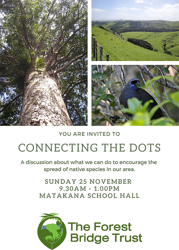 Connect the Dots flyer