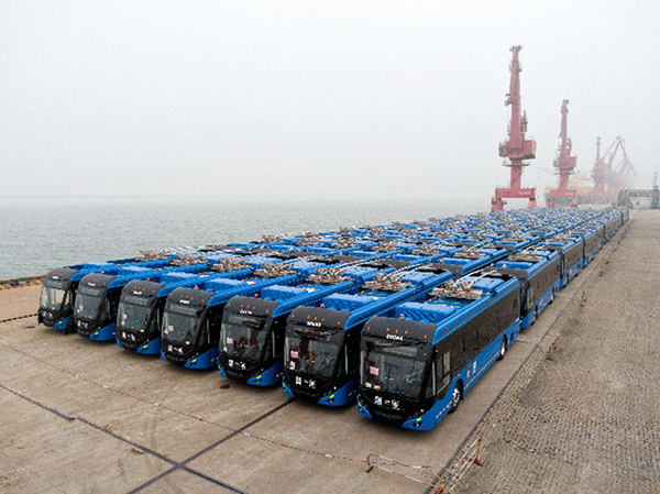 About half the Mexico City order of 130 Yutong ZK5120C buses, parked on wharf