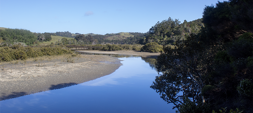 Te Muri crossing, from 70 metres farther upstream from farm road crossing