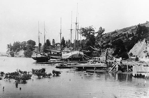 David Darroch yard, Whangateau Harbour