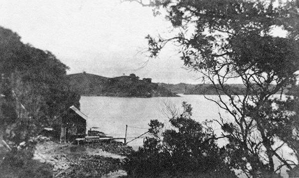 John Darrach and Sons shipyard, Te Kapa