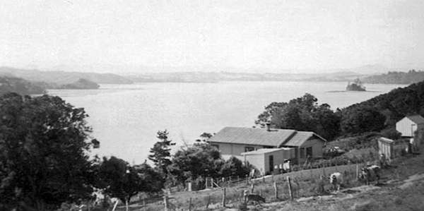 Nelson and Betty Lawrie's Rose Cottage, 1941, Motukauri beyond