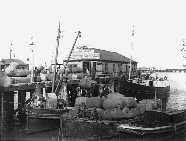 Coastal Steam Ship Company tee, Queen street Wharf
