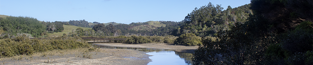 Te Muri Crossing visualisation, viewed from downstream, near end of farm road