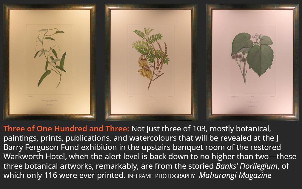 Tickets to J Barry Ferguson Fund botanical art exhibition